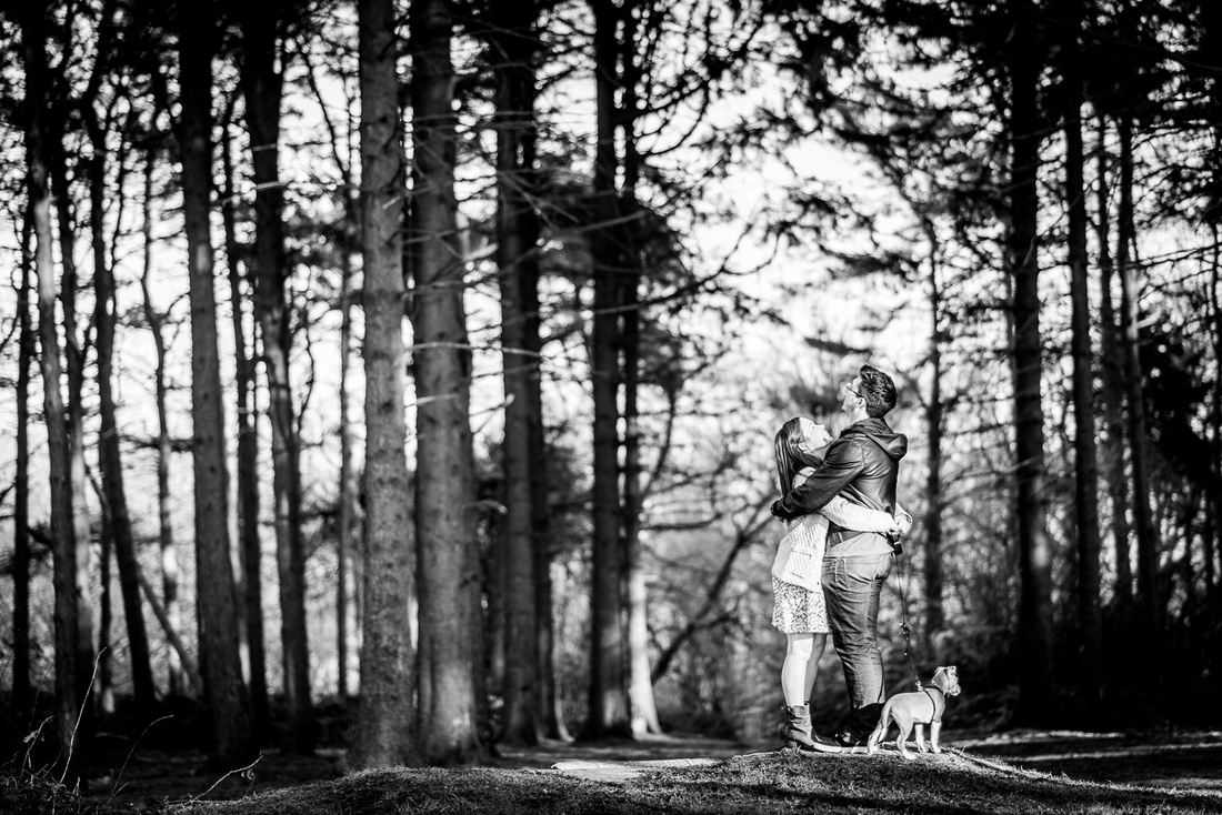 engaged couple embrace under the trees in the Lickey Hills